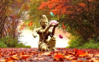 buddha_autumn.22371356_std