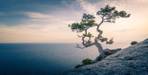 mindfulness-definition4-min