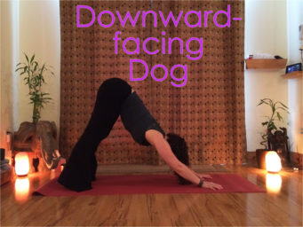 June 2018 Pose of the Month: Downward-facing Dog