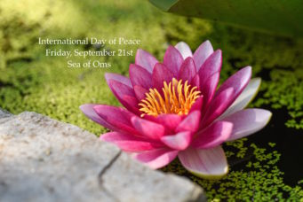 International Day of Peace ~ Sea of Oms