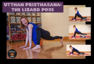 february pose of the month lizard