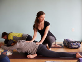 The Earth Element: Yin Yoga & Acupuncture for the Late Summer with Maegan