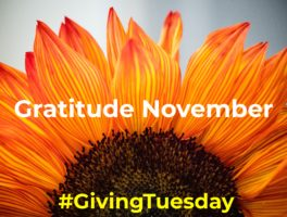 Gratitude November & Giving Tuesday!